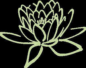 lotus-blossom-304875_960_720