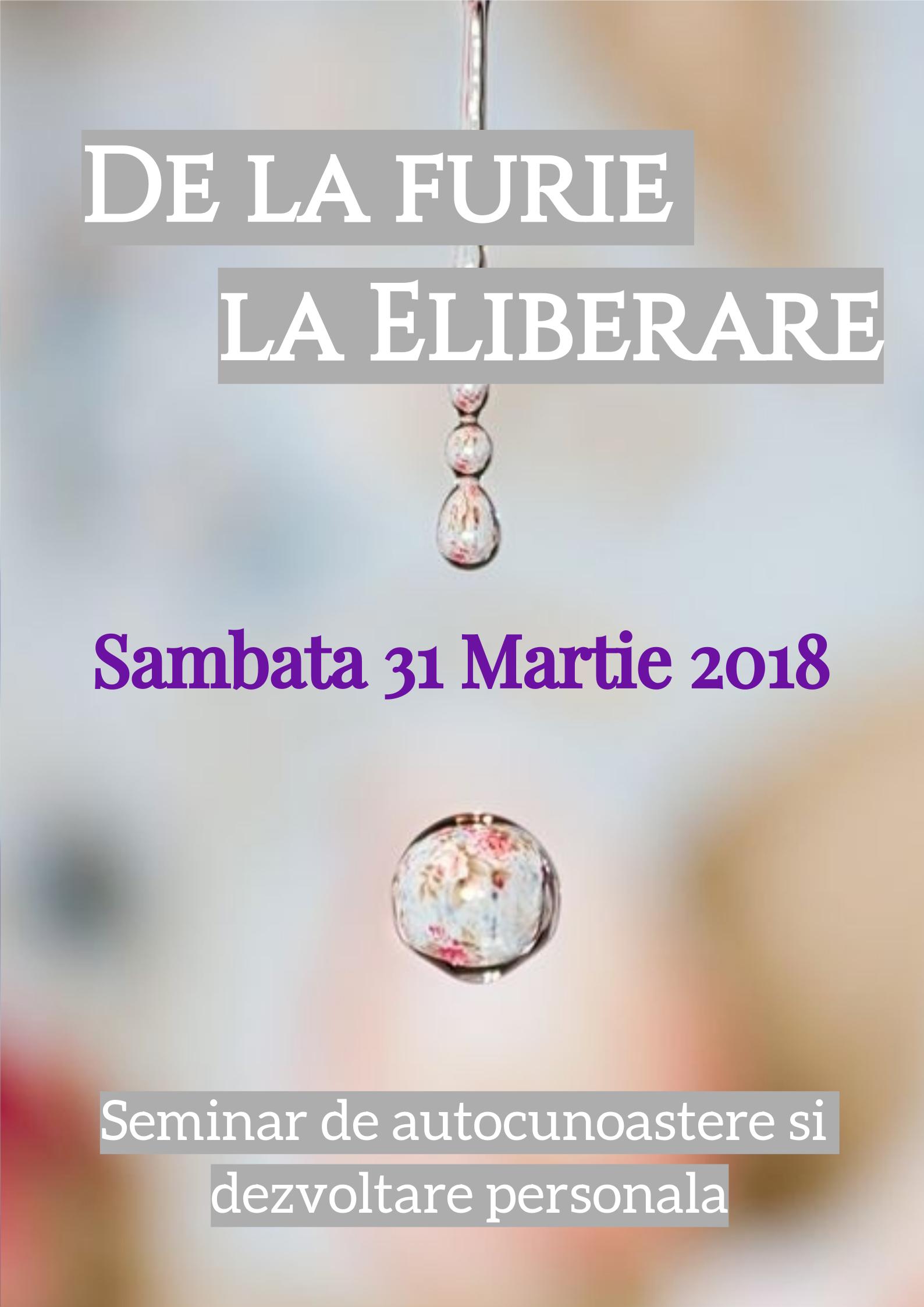 SEMINAR 31 MARTIE 2018